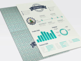 Free Infographic CV template